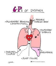 Dyspnea- paramedic nremt