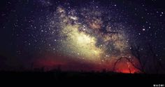 trees alone night space galaxy stars nature time lapse milky way Cosmos Shadows late night