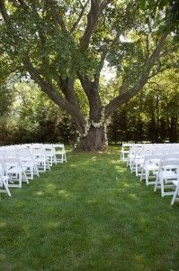 small wedding under a willow tree.. THIS IS YOUR DREAM!!!! | Bliss ...