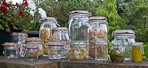 Jars for Sale, Choice of Packs, Bargain Prices at Wares of Knutsford
