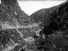 Ngauranga Gorge, Wellington, in the Shows the road and stream running alongside. Photograph taken by William Williams. Old Pictures, Old Photos, Christchurch New Zealand, The Hutt, Old Buildings, British Isles, Mountains, History, Places