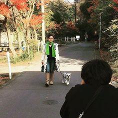 50歳からの素敵に歳を重ねる提案雑誌 「ゆうゆう」で 「ペットと暮らせば」特集の取材をRYUと一緒に受けました 来年2月1日発売号です🎵  #犬 #犬との暮らし  #RYU #シュナウザー #気流life