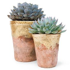 With an easy application of gold leaf (available at any art store), give tired terra cotta a second life. Just apply a spray-on adhesive and place the gold leaf directly on the pot, pressing it down with your thumb. Pull back the waxed layer, and seal again. Plant succulents in the pot for a modern, glam-meets-green look. ~ Sunset Magazine