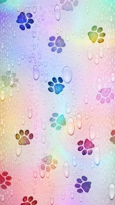 Rainbow Paw Prints Wallpaper by - 24 - Free on ZEDGE™ now. Browse millions of popular abstract Wallpapers and Ringtones on Zedge and personalize your phone to suit you. Browse our content now and free your phone Glitter Wallpaper Iphone, Bubbles Wallpaper, Rainbow Wallpaper, Kawaii Wallpaper, Print Wallpaper, Cute Wallpaper Backgrounds, Pretty Wallpapers, Cellphone Wallpaper, Colorful Wallpaper