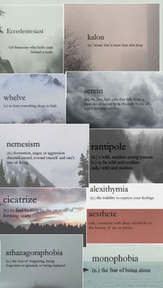 Unique Words, Simple Words, Phobia Words, Types Of Phobias, Unusual Wallpaper, Aesthetic Words, Grammar, Savage, Meant To Be