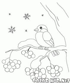 Gil Dot Painting, Painting For Kids, Drawing For Kids, Art For Kids, Dotted Drawings, Bird Drawings, Simple Car Drawing, Stitching On Paper, Mosaic Birds