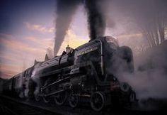 Duke Under the Sunset Duke, Train, Sunset, Photography, Art, Art Background, Photograph, Fotografie, Kunst
