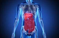 Hvad er inflammation i kroppen?