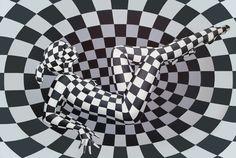 Oil on canvas 2013, 80x120 cm