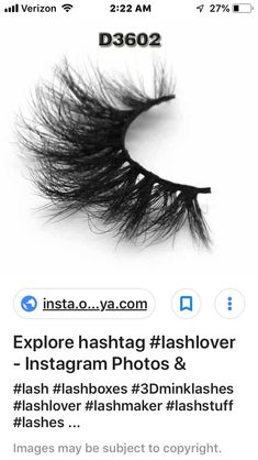 fd0ceae0327 D3602 Ashley S, Human Eye, Eyelashes, Eyes, Lashes, Cat Eyes
