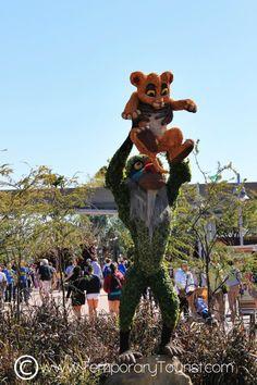 International Flower and Garden Festival in Epcot at Walt Disney World 2013 #LionKing #Simba #Rafiki