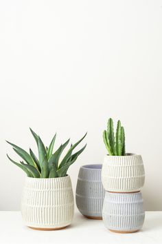 Washington Pottery Large Planter – Cedar & Hyde Mercantile Planter that is perfect for larger house plants Each planter is hand formed and hand carved from porcelain Available in white and lavender Subtle speckle detail Measures approx.