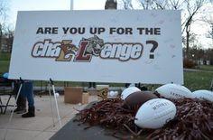 lehigh memorial day soccer tournament