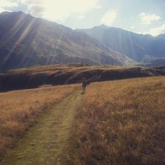When we don't shoot/edit/mix we walk.... #wanaka #nz
