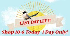 This is the beginning of the final hours of the Countdown to Spring Flash Sale! Click below for the latest Flash Sale!