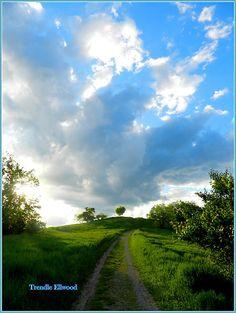 The climb to Radar Hill at The Ridges near Athens, Ohio USA  Oh, how I love Athens.