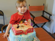 The Frozen Cake and Chicago Blackhawks Cake