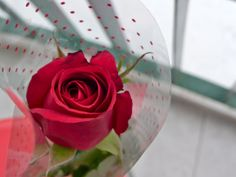 CoffeeFudge_AppleBerryPie: Roses are Red, Violets are Blue, Cupcakes are swee. Blue Cupcakes, Love Rose, Violets, Red Roses, Create, Sweet, Flowers, Plants, Blog