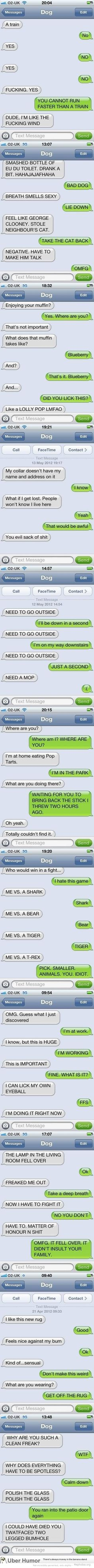 Dog texts omg....lololol I laughed lots at the last one