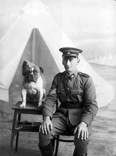Staff Sergeant Major Morgan and dog, 1915    ID Number: DA09725   Maker: Darge Photographic Company  Place made: Australia: Victoria, Melbourne, Broadmeadows