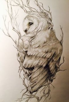 owl tattoo design / owl tattoo + owl + owl drawing + owl tattoo design + owl tattoo for women + owl art + owl crafts + owl tattoo men Owl Tattoo Design, Tattoo Designs, Owl Tattoo Drawings, Art Drawings, Tattoo Owl, Barn Owl Tattoos, Hawk Tattoo, Drawing Art, Animal Sketches