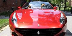 The cheapest new Ferrari money can buy is absolutely gorgeous. via Business Insider