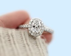 If you like Halo Engagement Rings then I think you've hit the jackpot with this MiaDonna ring! | Oval cut lab grown diamond in platinum
