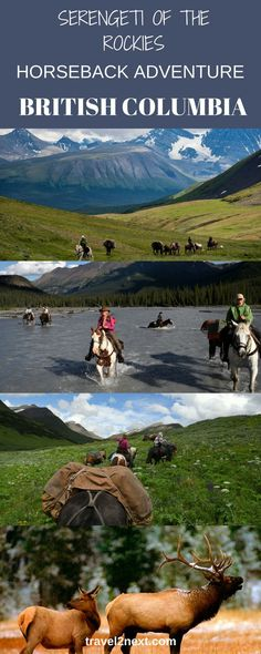 Serengeti of the Rockies | British Columbia Horseback Adventure in Canada. Lose your heart to the Canadian Rockies on this amazing horseback adventure.
