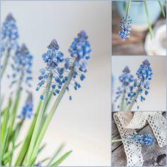 Herzenswärme Spring, Plants, Inspiration, Heart, Biblical Inspiration, Plant, Inspirational, Planets, Inhalation