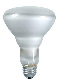 43 watt a19 philips ecovantage halogen white light bulb halogen