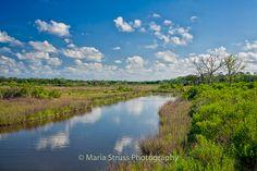 Egan's Creek on the Greenway in Fernandina Beach, Florida.