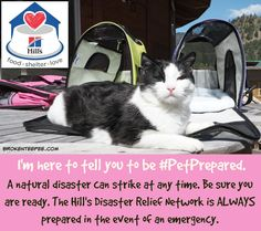 Some helpful disaster preparedness tips to assist you if you ever have to evacuate from your home with your pets #PetPrepared #AD