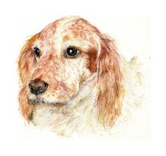 Cocker Spaniel - Mixed Media Tiffany Landale - Bespoke Portraiture -  www.foxkay.co.uk Cocker Spaniel, Bespoke, Tiffany, Mixed Media, Dogs, Animals, Taylormade, Animales, Animaux