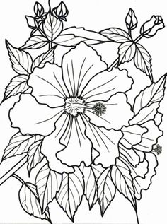 printable pictures to paint | the picture i chose came from here ... - Tropical Coloring Pages Print