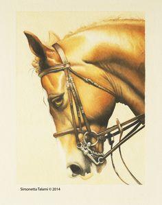 Cavallo Hannover - Watercolor