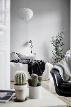 Tiny plants and cacti lend a pop of color to any minimalist room. - http://HarpersBAZAAR.com