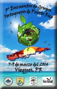 Encuentro de Grupos Tortugueros de Puerto Rico 2014 @ Vieques #sondeaquipr #encuentrogrupostortuguerospr #vieques