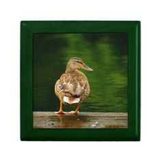 Duck on Dock Jewelry Boxes
