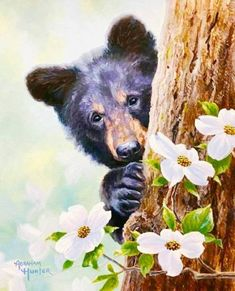 Celebrate Each New Day Painting & Drawing, Watercolor Paintings, Black Bear Cub, Bear Paintings, Colouring Pics, Abstract Canvas Art, Bear Art, Watercolor Animals, Wildlife Art
