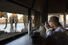 Singita's collection of private villas dotted across Africa make for the perfect basecamp for travellers looking to drink in the African landscape. Private Safari, Wildlife Safari, Sustainable Tourism, Plunge Pool, Wildlife Photography, Villa, Adventure, Landscape, Nature