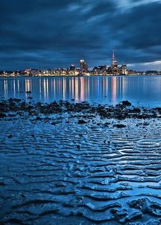 Auckland skyline from a beach in Devonport. Auckland, New Zealand. Oh The Places You'll Go, Places Around The World, Places To Travel, Places To Visit, Around The Worlds, Vacation Places, Vacations, New Zealand Beach, Auckland New Zealand