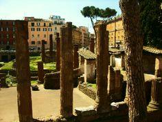Honey! I'm in Rome!