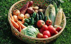 Овощи на своих садовых участках мы выращиваем не ради славы, а для получения полезной и вкусной продукции. Но при…