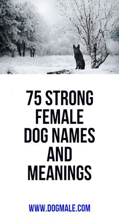 75 Strong Female Dog Names and Meanings 75 Strong Female Dog Names and Meanings 75 Strong Female Dog Names and Meanings<br> Female Puppy Names Unique, Female Dog Names List, Hunting Dog Names Female, Girl Dog Names Unique, Dogs Names List, Female Warrior Names, Girl Pitbull Names, Puppies Names Female, Names