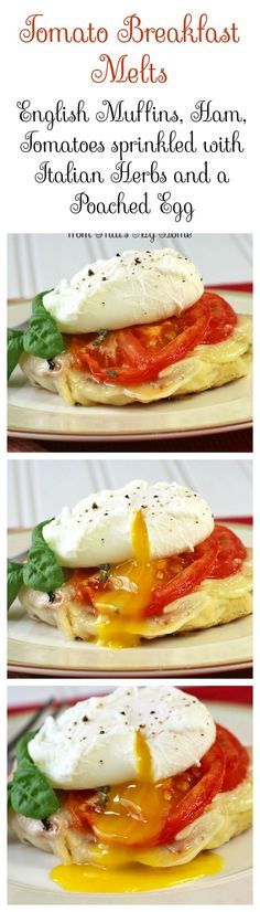 Tomato Breakfast Melts - English muffins topped with ham, provolone cheese, tomatoes and a poached eggs. #ad #freshfromflorida
