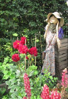 B B & B, Bed And Breakfast, Cowboy Hats, Flowers, Plants, Fashion, Breakfast In Bed, Moda, Western Hats