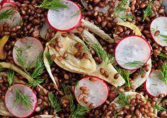 Black Barley, Fennel, and Radish Salad// bon appetit