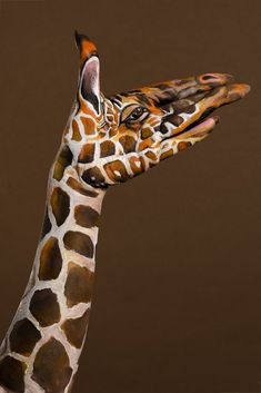 Hand Painting : les incroyables animaux de Guido Daniele