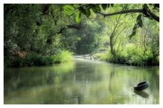 Read a Book-Experience calmness on the River Kaveri. For more information, please visit http://www.amanvanaspa.com/