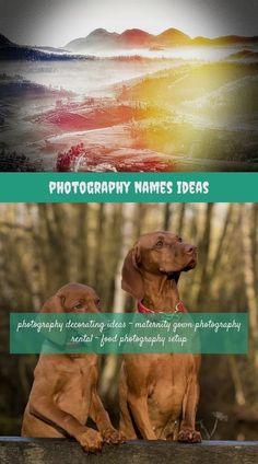 horse photography 333 20180711170057 31 photography illuminations